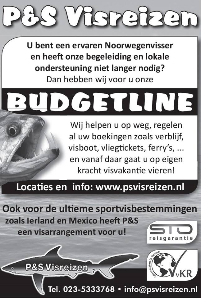 butget advertentie